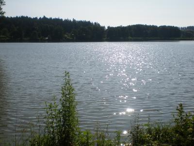 Starý rybník